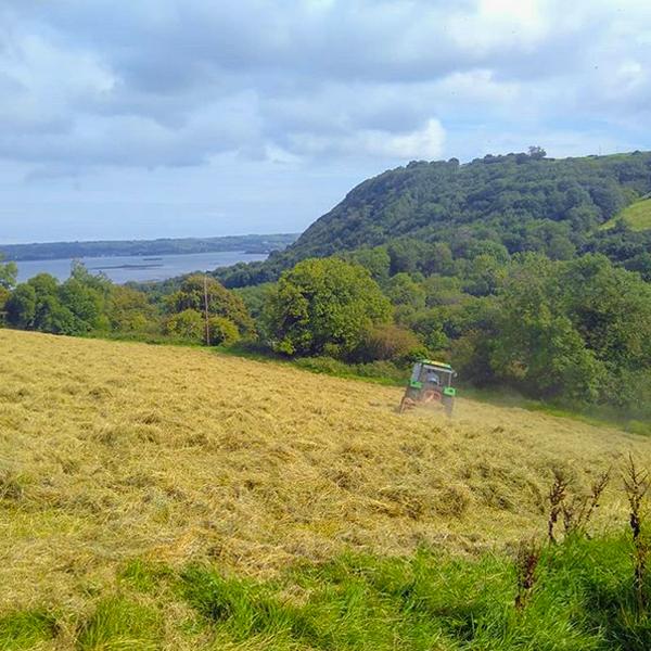 View from Jubilee Farm